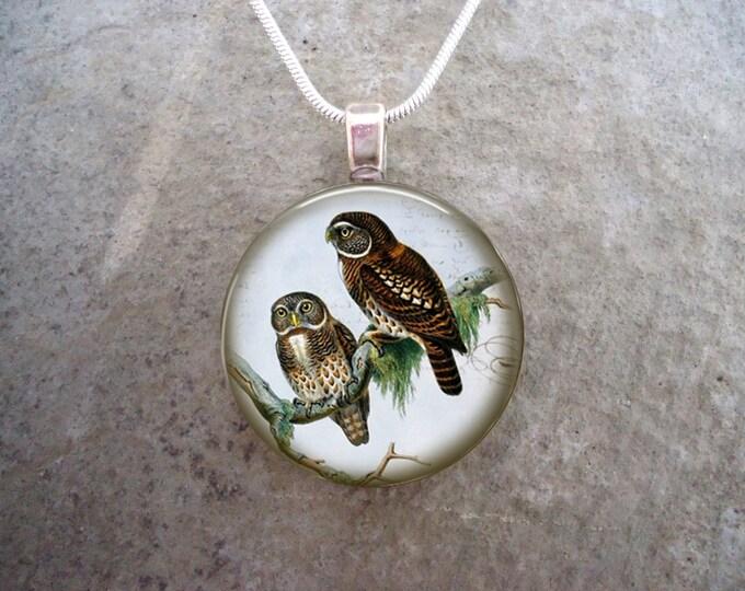 Owl Jewelry - Glass Pendant Necklace - Victorian Bird 45