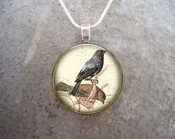 Bird Jewelry - Glass Pendant Necklace - Free Shipping - Style BIRD03