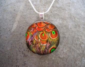 Peacock 18 - Beautiful Feather Jewelry - Glass Pendant Necklace - sku PEACOCK18