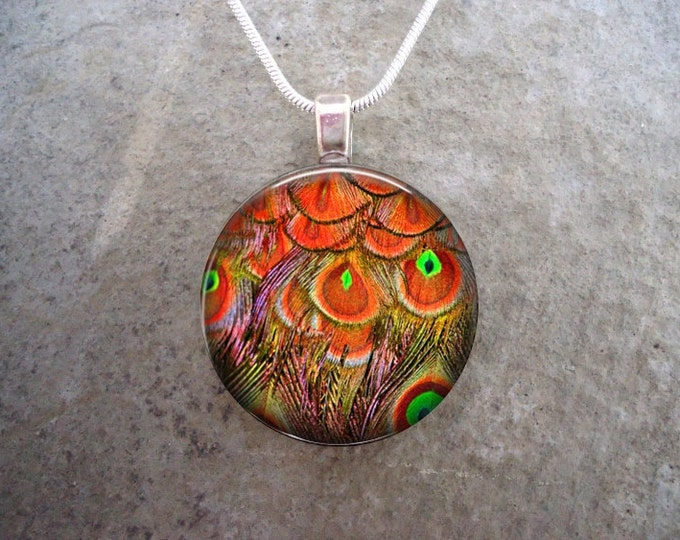 Peacock 18 - Beautiful Feather Jewelry - Glass Pendant Necklace
