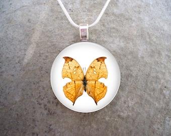 Butterfly Jewelry - Glass Pendant Necklace - Butterfly 30