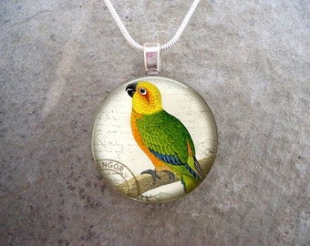 Parrot Jewelry - Glass Pendant Necklace - Free Shipping - Style BIRD30