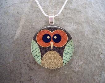 Owl Jewelry - Glass Pendant Necklace - Free Shipping - sku OWL11