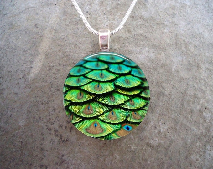 Peacock 2 - Feather Jewelry - Glass Pendant Necklace - sku PEACOCK02
