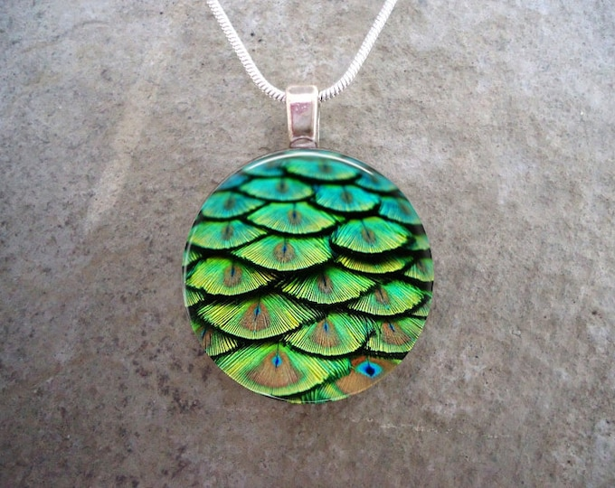 Peacock 2 - Feather Jewelry - Glass Pendant Necklace