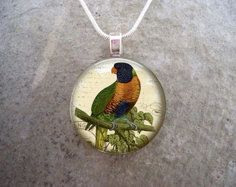 Blue Mountain Lory - WT Greene Parrot Jewelry - Glass Pendant Necklace - Free Shipping - Style BIRD21