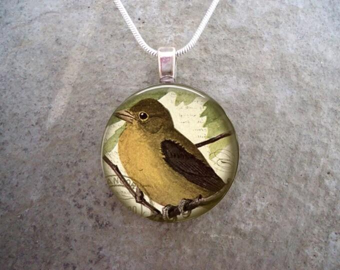 Bird Jewelry - Glass Pendant Necklace - Victorian Bird 16 - Free Shipping - Style BIRD16