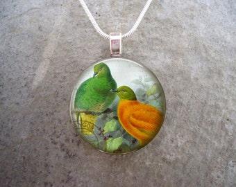 Bird Jewelry - Glass Pendant Necklace - Free Shipping - Style BIRD37