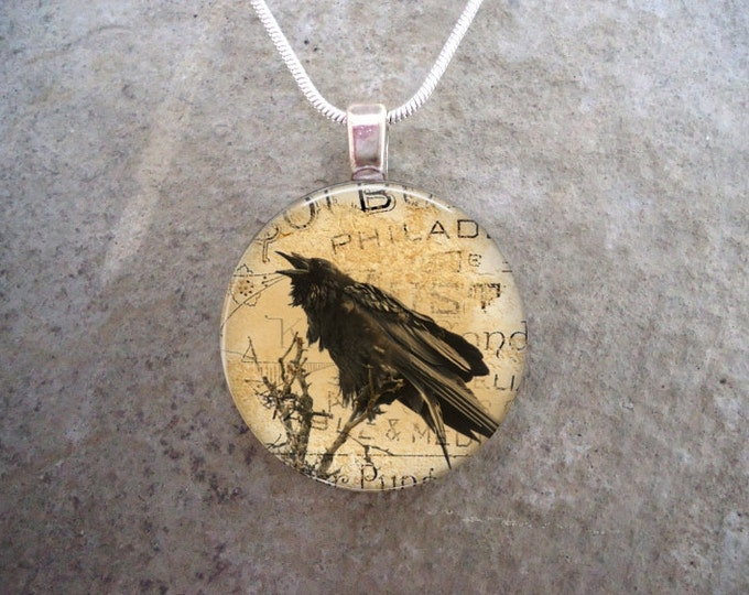 Crow Jewelry - Bird Jewellery - Glass Pendant Necklace - Raven 9
