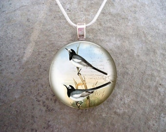 Bird Jewelry - Glass Pendant Necklace - Free Shipping - Style BIRD43