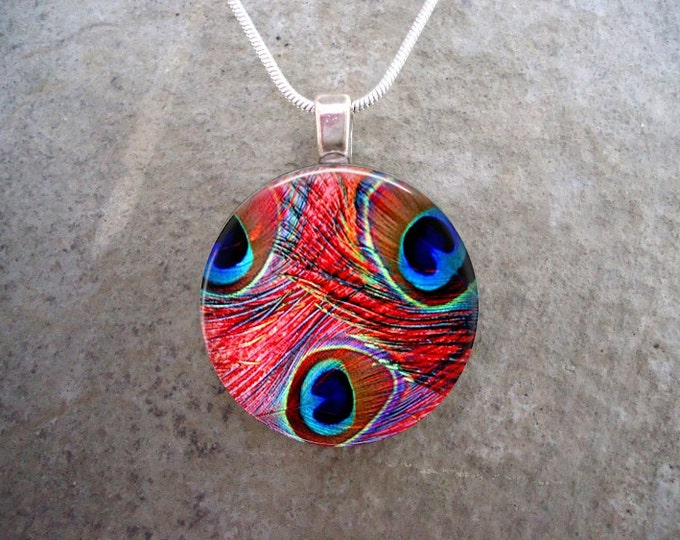 Peacock 7 - Pink and Blue Feather Jewelry - Glass Dome Pendant Necklace
