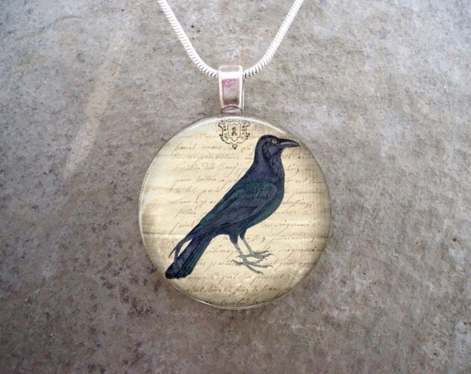 Crow Jewelry - Bird Jewellery - Glass Pendant Necklace - Free Shipping - Style RAVEN05