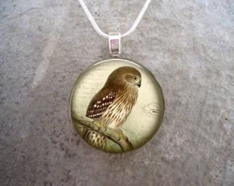 Owl Jewelry - Glass Pendant Necklace - sku BIRD13