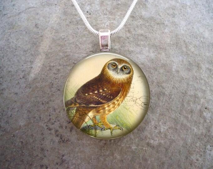 Owl Jewelry - Glass Pendant Necklace - Free Shipping - sku BIRD42