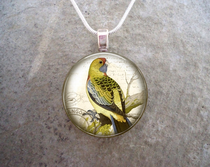 Yellow-Rumped Parakeet - WT Greene Bird Jewelry - Glass Pendant Necklace - Free Shipping - Style BIRD06