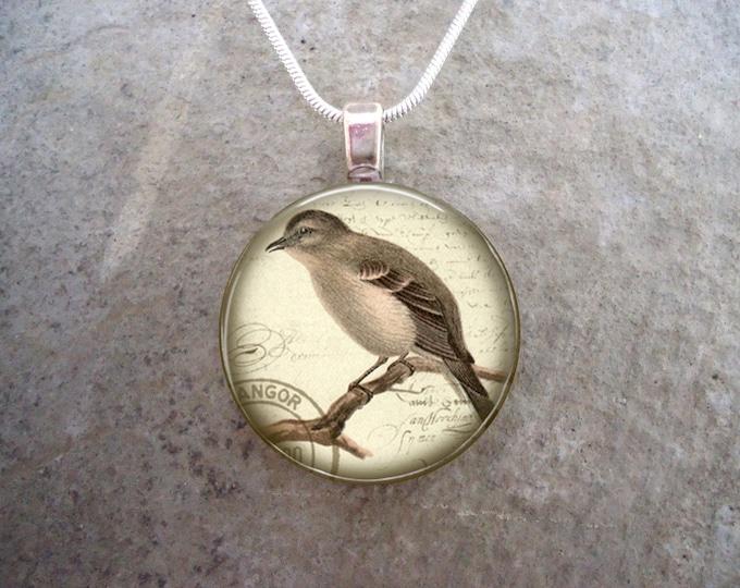 Bird Jewelry - Glass Pendant Necklace - Free Shipping - Style BIRD05