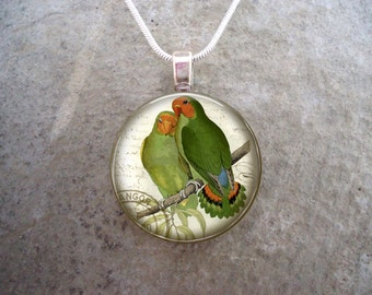 West African Lovebird Pendants - 25mm Diameter Glass Pendant for Necklace or Key chain - Gift for bird lovers - Free Shipping - Style BIRD11