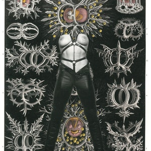 11\u201dx14\u201d Fine Art Print-Mythological Art Femme Fatale Fantasy Art Kinky Art Erotic Art Bondage Art Queer Art Medusa