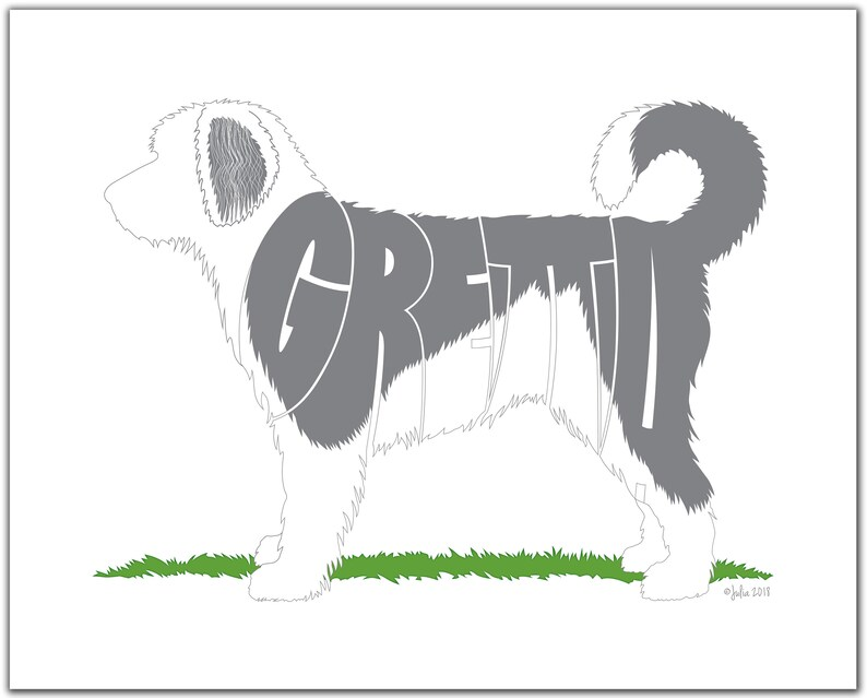 Personalized Sheepadoodle with Distinct Markings 7