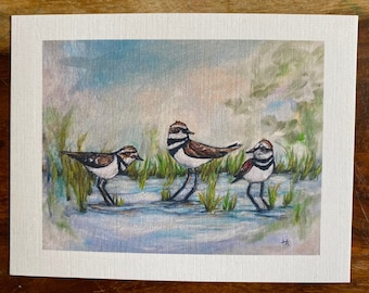 Local killdeer birds discussing the morning's happenings