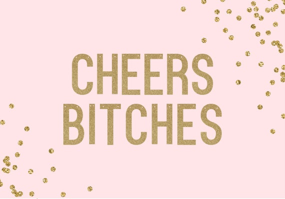 CHEERS BITCHES - Glitter Banner - Bachelorette Party Decorations. Birthday Party Decor. Dorm Wall Decor. 30th Birthday for Her.