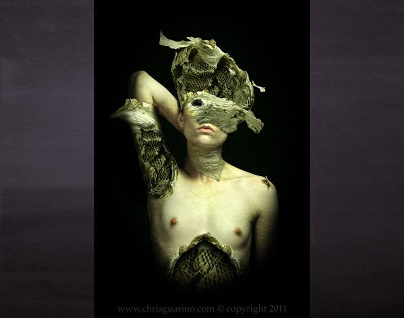Dark Fairy Photo   Bee Queen  fine art print image 0