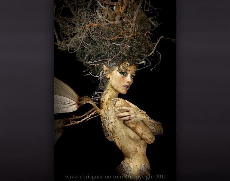 Fairy Art  The Root Fairy  from the the dark art fantasy image 0