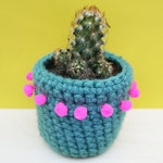 Cactus cosy plant pot, in teal and neon pink, by Chimps Tea Party