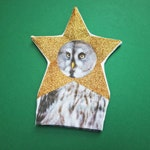 Christmas Tree Topper, Owl in Star Costume Decoration, by Chimps Tea Party