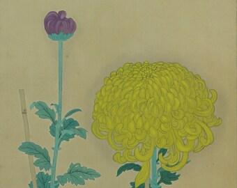 Japanese Scroll,Scroll Painting,kakejiku,Kakemono,Flower Painting,Chrysanthemum,Yellow Flower Painting,Wall art Painting,Japanese Art-J404