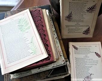 Fall Ferns Theme, Vintage Book Pages, Junk Journal Ephemera Pack, Ephemera Lot
