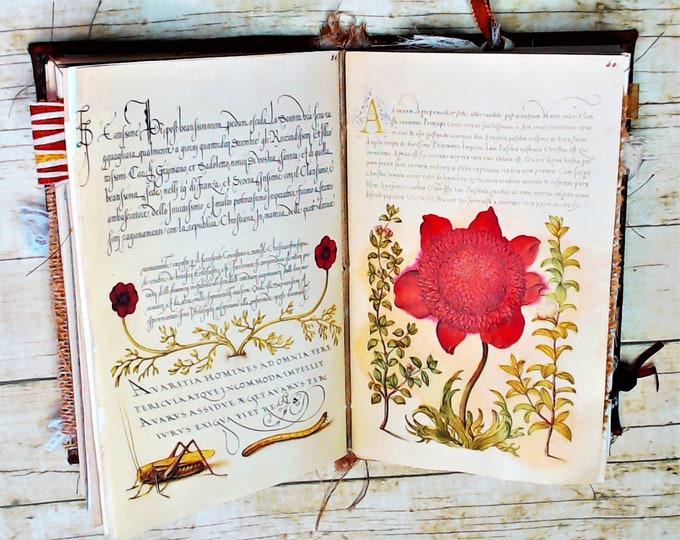 Calligraphy & Flowers Journal, Antique Journal, digital print