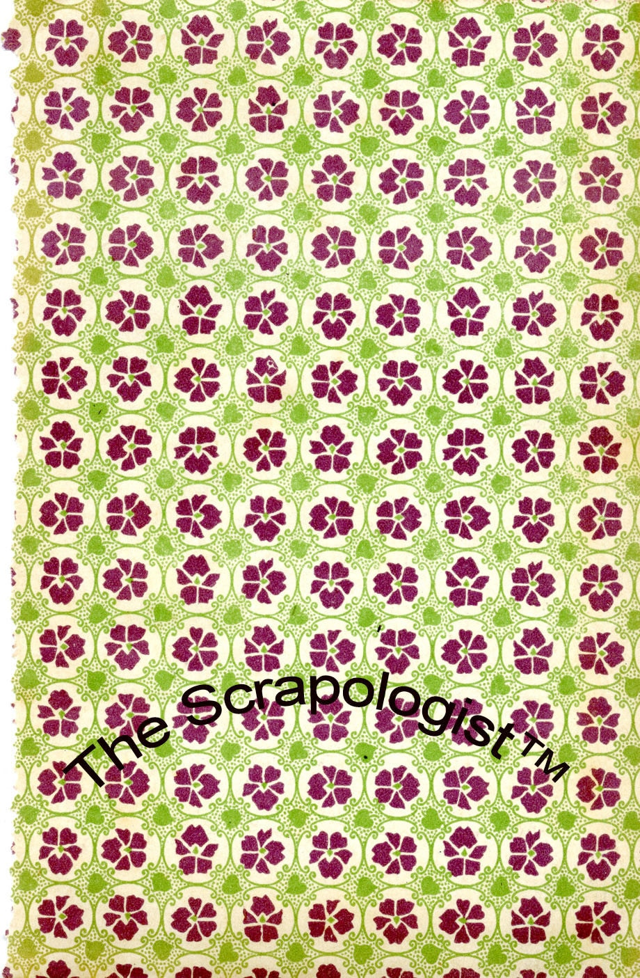 Vintage Book End Papers Flower Pattern Collection Instant