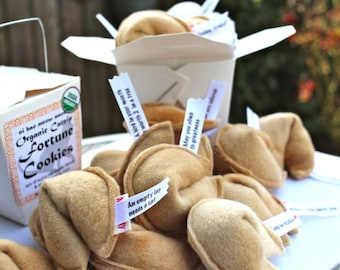 Cat Fortune Cookies | Catnip Toys | Organic Catnip | Cat Toys | Fortune Cookies | set of 4 in Fun Take Out Container