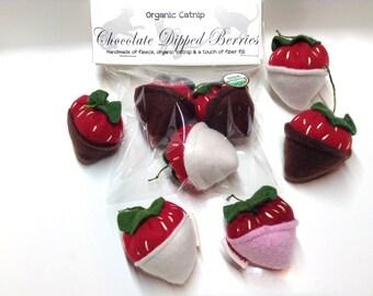 S/3 Organic Catnip Strawberries