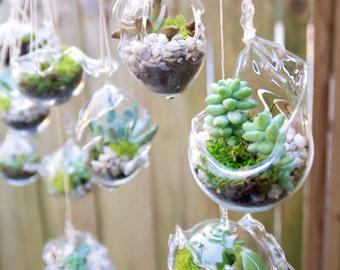 Succulent Wedding Favors Glass Hanging 190