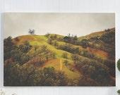 California landscape canv...