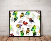 bird art print / nature a...