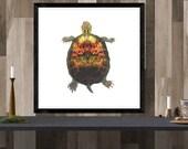 turtle art print / animal...