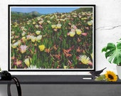 floral landscape photogra...