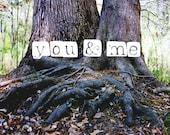 tree photography print, f...