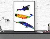 whale art print / whale i...
