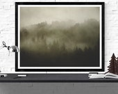 redwood photography art p...
