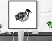 bird illustration art pri...