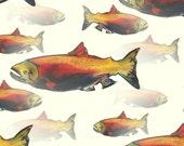 fish art print / nature a...