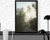 forest photography print ...