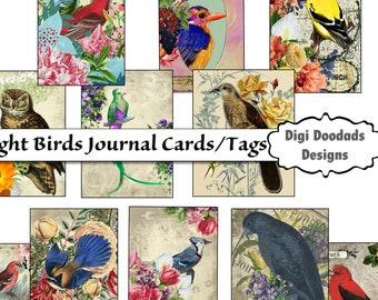 ATC Journal Cards Bright Birds Set of 12