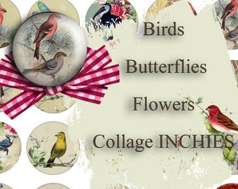 Floral Roses and Birds Inchies Collage Sheet 1 Inch Circles Printable for Bottle Cap Jewelry, Bezel Settings, Resin Pendants, Bird Circles