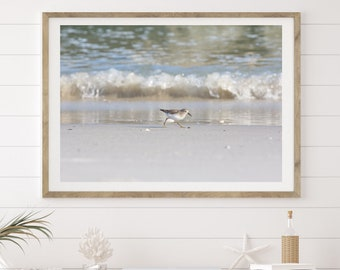 Horizontal Sandpiper Photograph Beach Print, Large Coastal Wall Art, Shorebird Photo and Waves, living room wall art