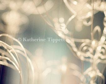 Abstract - Fine Art Photography -Katherine Tippett